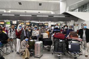 Hơn 200 người Việt hồi hương trước giờ Ấn Độ cấm xuất cảnh