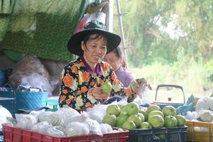 Nông dân Đồng Tháp thu 'quả ngọt' nhờ làm nông chuyên nghiệp và tử tế