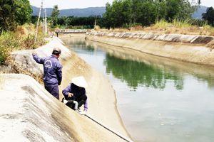 Thủy điện 'cứu hạn' cho hàng trăm hécta cây trồng