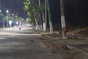 Đà Nẵng: Đề nghị thăng quân hàm cho 2 cán bộ chiến sĩ hy sinh khi truy đuổi nhóm đua xe