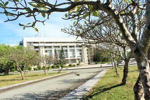 Đô thị đại học xanh: Cam kết về sự phát triển bền vững