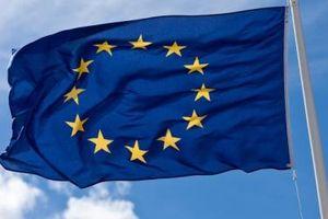 Đẩy nhanh tiến độ đăng ký mã số REX cho doanh nghiệp xuất khẩu theo quy định của EU