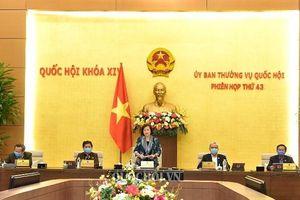 Ủy ban Thường vụ Quốc hội ban hành ba nghị quyết phê chuẩn, điều động nhân sự