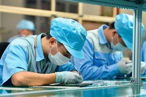 Khuyến cáo doanh nghiệp Việt Nam kinh doanh với doanh nghiệp Morocco