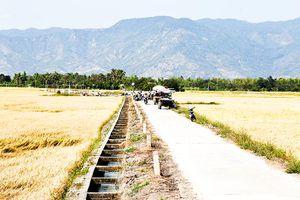 Nỗ lực xây dựng nông thôn mới