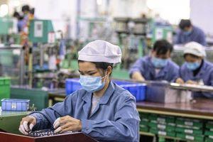 Chuyên gia nhận định về lộ trình phục hồi kinh tế toàn cầu hậu Covid-19
