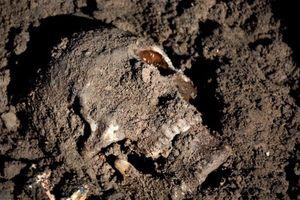 Khủng khiếp những ngôi mộ tập thể cổ xưa từng được phát hiện