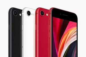 Apple trình làng iPhone giá rẻ trong thời dịch Covid-19