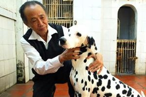 Nguyễn Bảo Sinh – 'quái nhân' Hà Nội