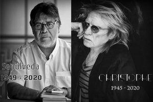 Hàng loạt nghệ sĩ, nhà văn lớn qua đời vì COVID-19