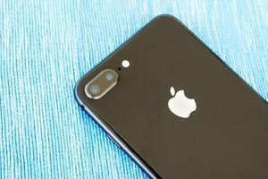 Sẽ không còn iPhone 'Plus' nào nữa?