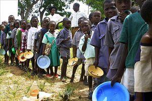 Hội đồng bảo an LHQ nhóm họp về bảo vệ người dân bị nạn đói do xung đột