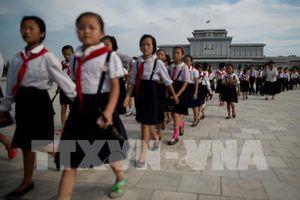 Triều Tiên mở 190 trường phổ thông chuyên công nghệ thông tin