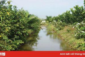 Phú Tân đảm bảo nguồn nước tưới phục vụ sản xuất hè thu