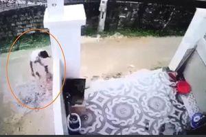 Thông tin bất ngờ về tài xế cán chết bé trai 1 tuổi, giấu xác phi tang