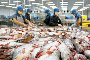 Tin vui cho cá tra xuất sang Hoa Kỳ trong đại dịch Covid-19