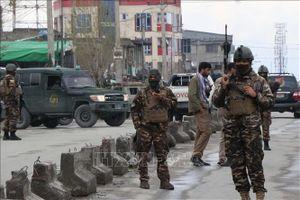 Đánh bom liều chết gần Kabul khiến nhiều người thương vong