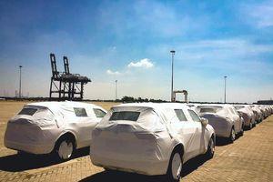 Hàng chục ô tô Nissan mới nhập về bỏ quên không ai nhận
