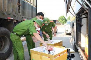 Hà Tĩnh: Bắt giữ xe khách chở 800kg thịt chó, nội tạng đang bốc mùi