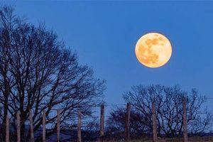 Việt Nam đón siêu trăng cuối cùng của năm 2020 vào đêm nay