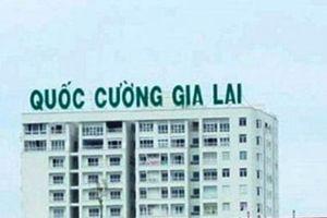 Công ty Quốc Cường Gia Lai mượn thêm bà Như Loan 69 tỷ đồng