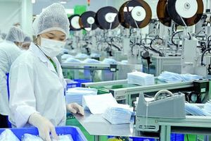 Khẩu trang y tế vào thị trường EU bắt buộc phải có nhãn CE