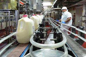 Vinamilk ủng hộ gần 23.000 lít sữa cho người dân Mỹ