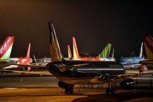 Bộ GTVT tạm thời chưa xem xét lập thêm hãng hàng không mới