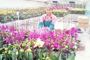 Hà Nội nâng cao chất lượng xây dựng nông thôn mới