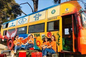 Thêm điểm nhấn hấp dẫn du khách ở phố núi Gia Lai