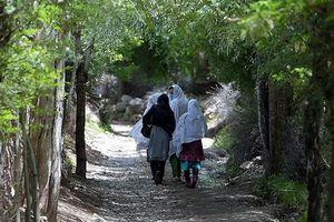 Hai thiếu nữ Pakistan bị gia đình sát hại vì hủ tục 'giết người danh dự'