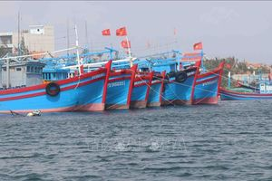 Xử lý nghiêm hành vi tự ý gỡ các thiết bị giám sát tàu cá