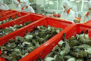 Doanh nghiệp lưu ý quy định mới khi xuất khẩu tôm vào Australia