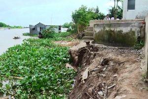 Khẩn cấp xử lý sạt lở bờ sông ở huyện Chợ Mới, An Giang