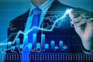 Nữ Giám đốc thao túng chứng khoán, gần 1.500 nhà đầu tư sập bẫy