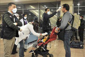 Ai Cập cân nhắc từng bước nối lại các chuyến bay quốc tế