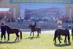Nài ngựa Bắc Hà so tài kịch tính, đua tranh ngôi vô địch