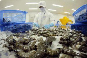 Từ 1/7, Úc chính thức áp dụng điều kiện mới với tôm nhập khẩu