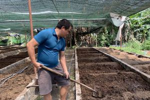 Người đàn ông nuôi giun chăn gà ở Quảng Ninh