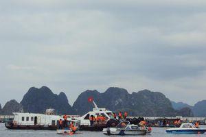 TP Cẩm Phả phòng, chống lụt bão: Chủ động, kịp thời, khẩn trương