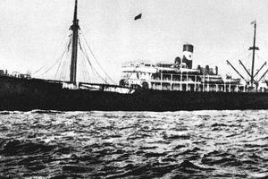 Cuộc hành trình 30 năm từ Bến cảng Nhà Rồng