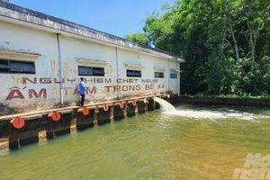 Cần quản lý và sử dụng chặt chẽ nguồn nước trong vụ hè thu