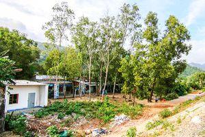 Đất thu hồi tại dự án Trạm dừng nghỉ đèo Cả: Giao cho xã Đại Lãnh quản lý