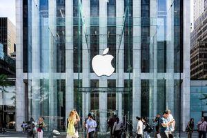 Apple thừa nhận lỗi màn hình iPhone, hứa thay miễn phí