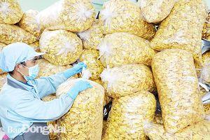 Đưa Đồng Nai trở thành trung tâm chế biến nông sản cả nước