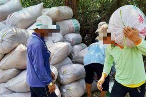 Điều tra 3 thương lái ở Cà Mau nợ dân hơn 1,3 tỷ đồng tiền mua lúa