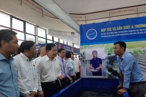 Đẩy mạnh tiêu thụ sản phẩm cá tra tại thị trường nội địa