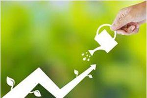 Thanh khoản thị trường chứng khoán hậu Covid-19 tăng mạnh, thêm kỷ lục về khối lượng khớp lệnh