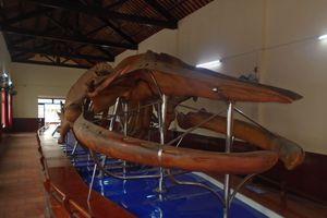Nơi lưu giữ 100 bộ xương cá voi đón nhận Bằng xếp hạng Di sản Văn hóa phi vật thể cấp quốc gia