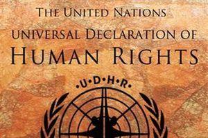 Tuyên ngôn quốc tế về nhân quyền, 1948